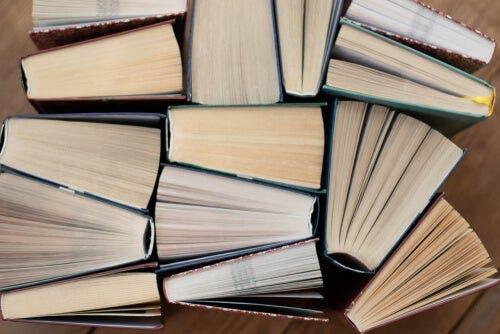 Fotoğrafları tepeden çekilmiş bir dizi kitap.