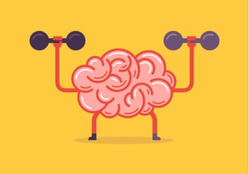 Nörobik - Beyin İçin Bir Egzersiz