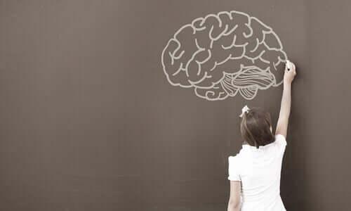 WISC Testi: Psikologlar Bu Testi Neden Kullanıyor?