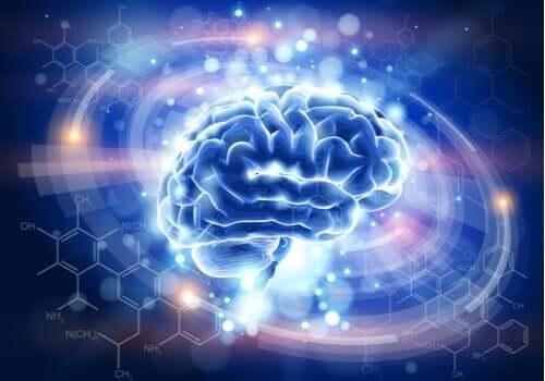 ışıklar içinde beyin görseli