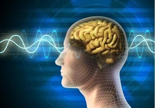 Elektrokonvülsif Terapi ve Kullanım Alanları