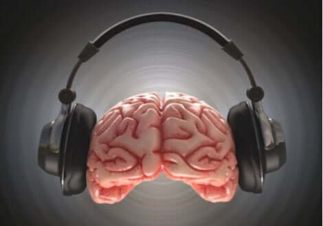 stereofonik ses alan beyin