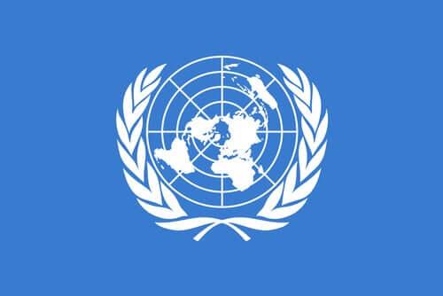 Birleşmiş Milletler logosu.