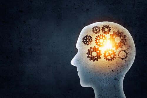Hafızamızı Eğitmek İle Ne Kazanırız?