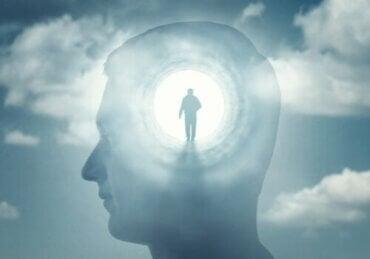 Kendini Bilme Eksikliği - Bilinç Psikopatolojisi