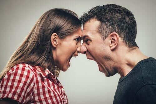 Kendilerini bağırmak ile ifade eden bir çift.