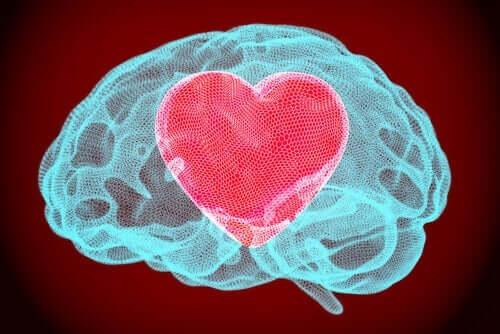 Duygusal Öz Düzenlemenin Gücü