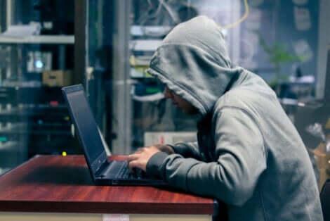 bilgisayar başında çalışan hacker