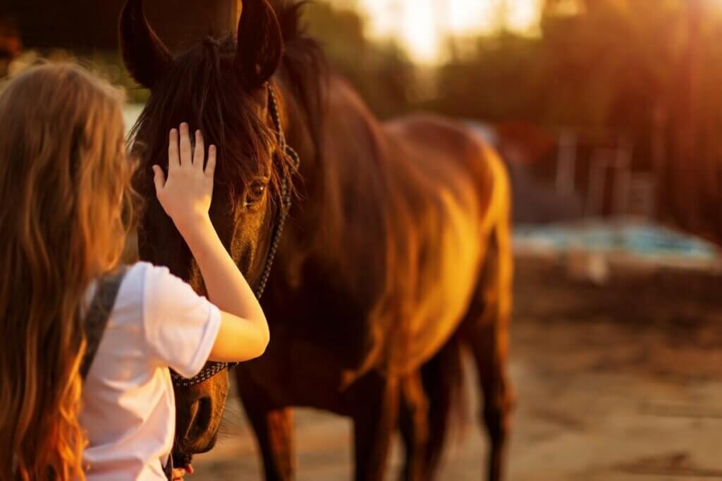 At korkusu kolaylıkla aşılabilecek bir durum