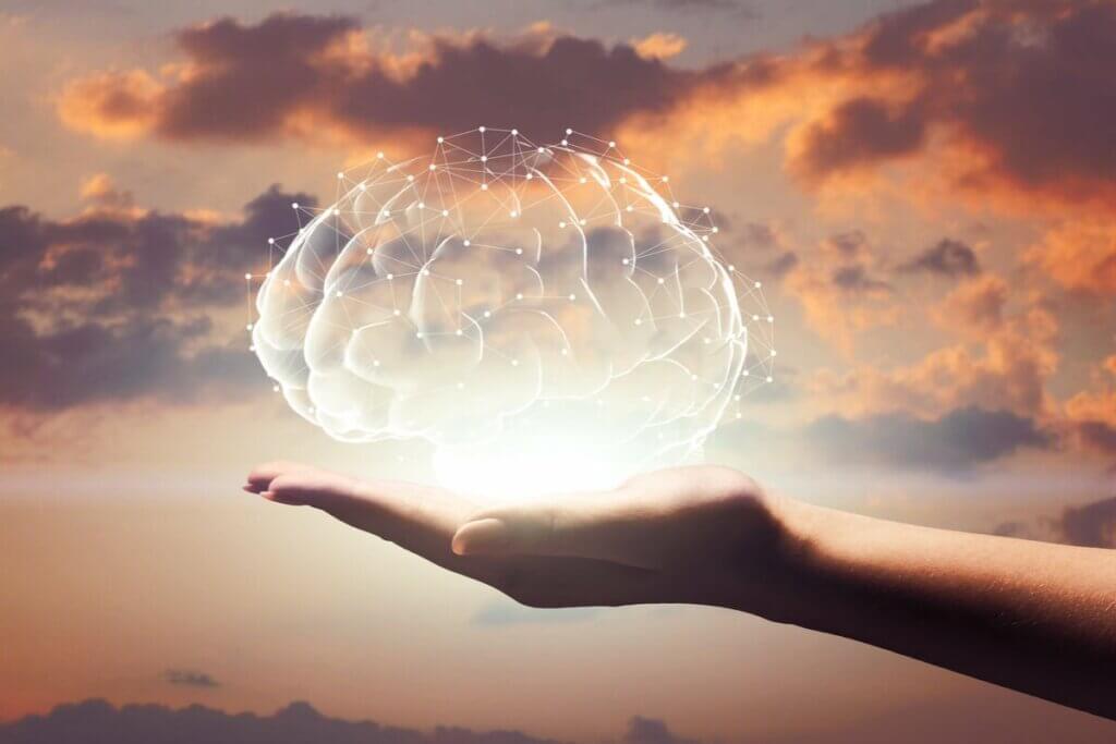 eldeki beyin