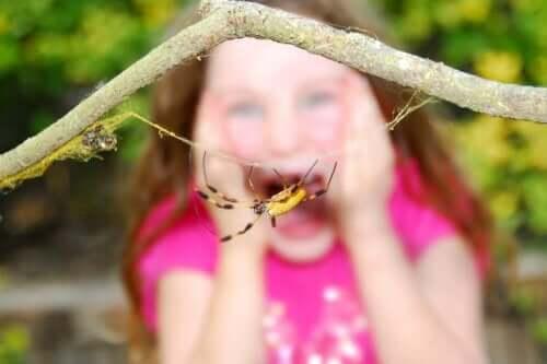 sarı örümcek ve ona bakan kız çocuğu