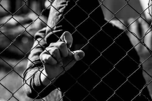 Ön Yargının Psikososyal Özellikleri ve Radikalleşme