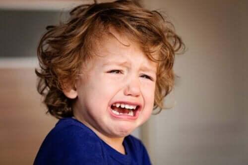 ağlayan çocuk kameraya bakıyor