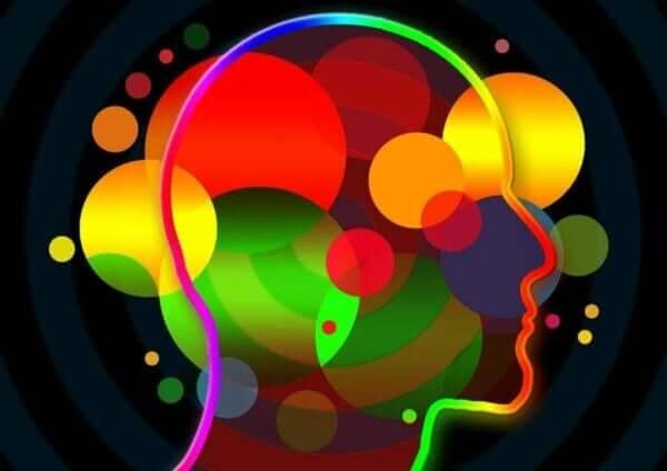 Sosyo-Duygusal Beceriler Nelerdir?