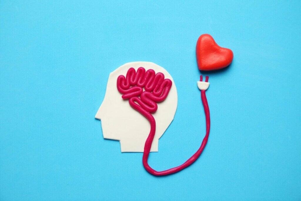 Mutluluk hormonu kalp ve beyin ilişkisi