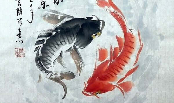 Kırmızı siyah balık