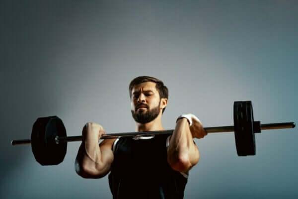 Metabolik Stres, Özellikleri ve Nedenleri