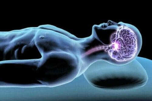 Uyku Hormonları: Gece Boyunca Güzelce Dinlenme