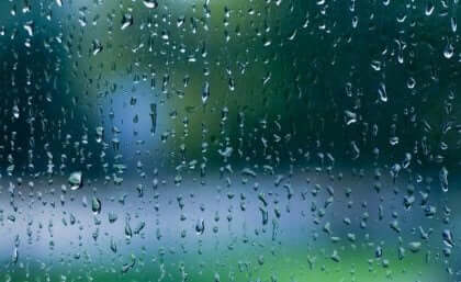 Beyni Rahatlatan Melodi: Yağmur Sesi