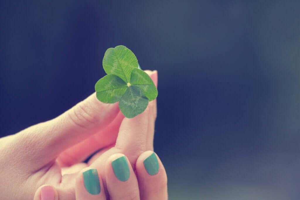 Şans ve Zeka Arasındaki İlişki