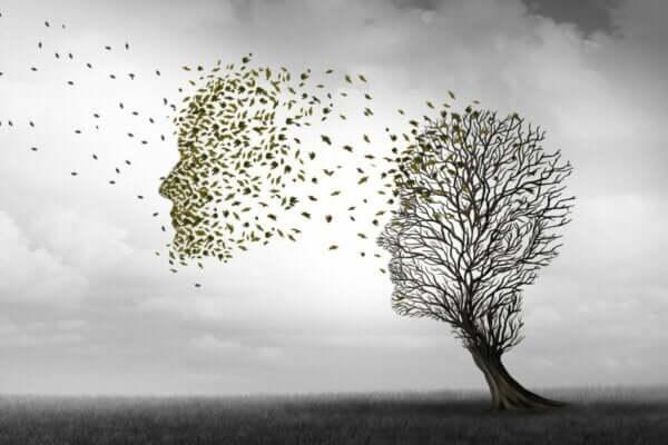 Alzheimer Hastalığının Çeşitli Evreleri