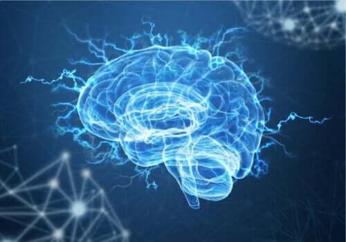 Beyindeki nörotransmiterler neler?