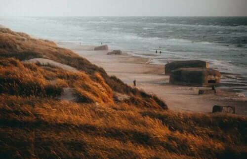 Deniz kenarındaki sığınaklar.
