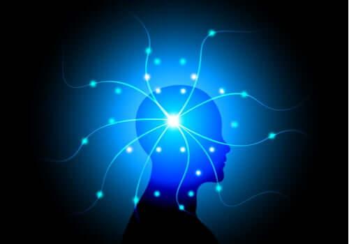 insan beyni ve ışıklar