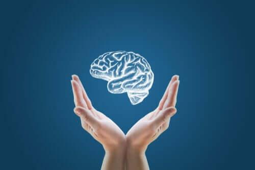 Laboratuvarda Oluşturulan Mini Beyinler: Bu İnsan Klonlamanın Başlangıcı Mı?