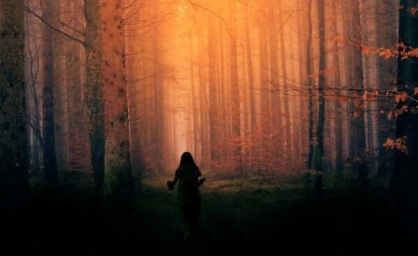 Ormanda ve bilinçli yaşamak.