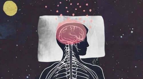 Beynin kıvrımları uykuda nasıl oluyor?