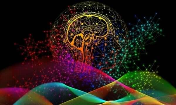 Beyninizin Eşsiz Nörolojik İmzaları ve Bunların Önemi
