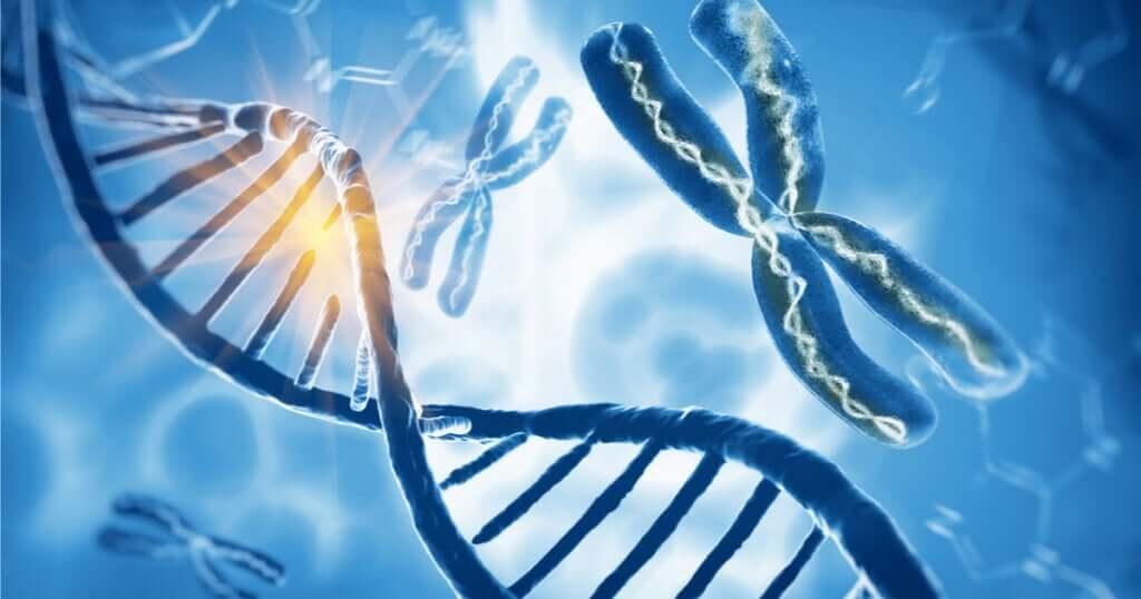 Klinefelter Sendromu: Erkeklerde Fazla X Kromozomu