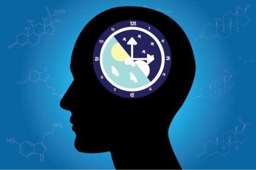 beyinde gündüz ve gece