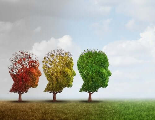 üç renk kafa ağaç