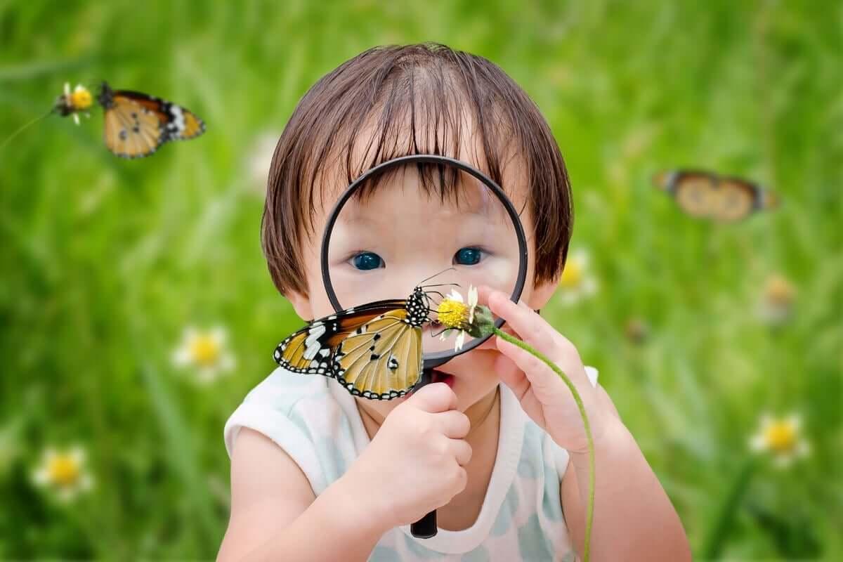 büyüteçle kelebeği inceleyen bebek