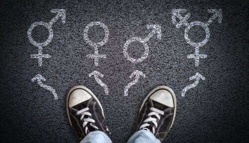 Cinsiyet Disforisi Hakkında Her Şey