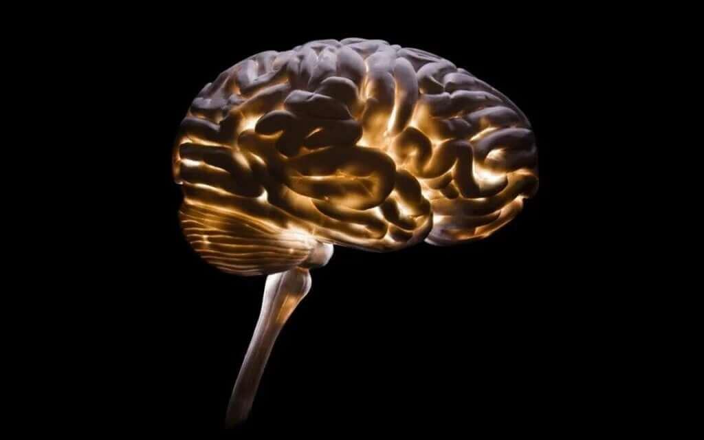 Nörokriminoloji: Suçluluğu Anlamak