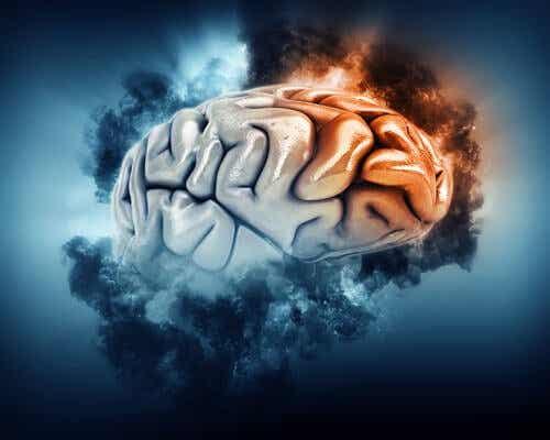 soğuk ve sıcak beyin