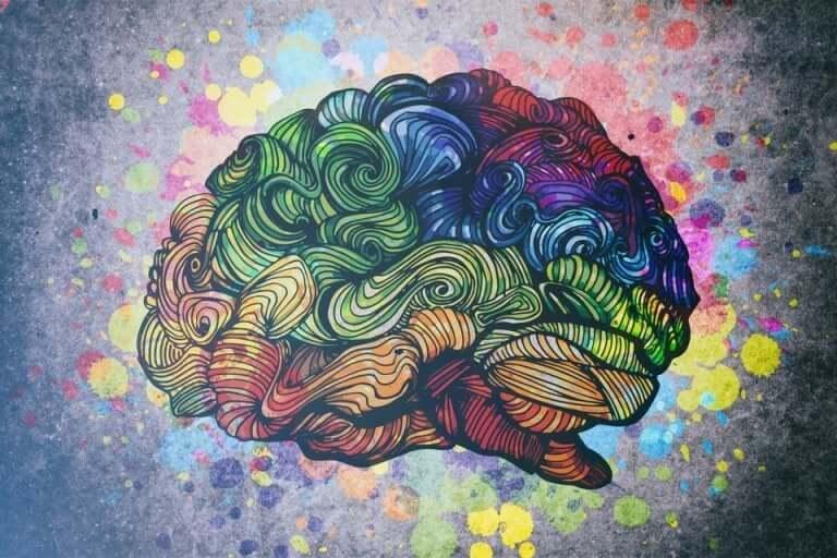 rengarenk bir beyin