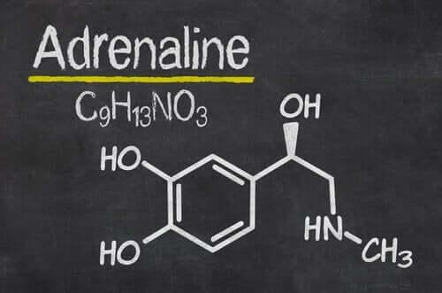 adrenalin formülü