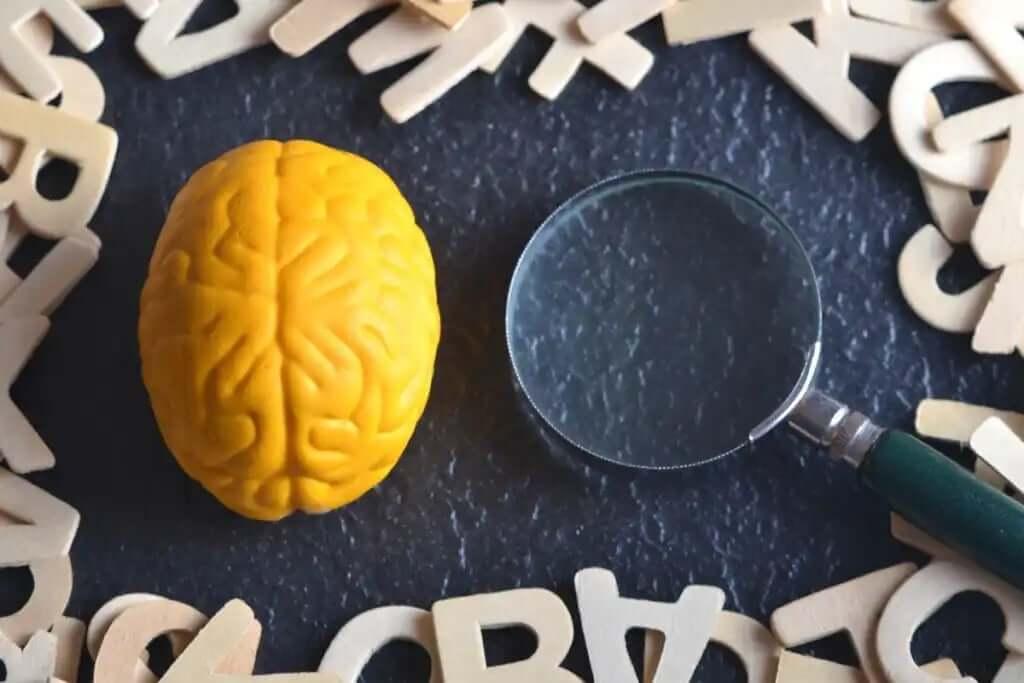 harfler ve beyin