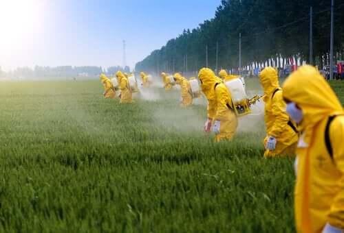 Pestisitler ve Beyin Üzerindeki Etkileri