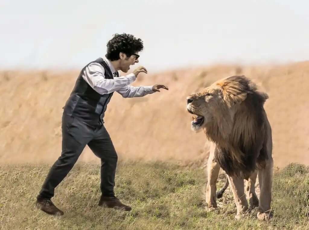 aslanla kavga